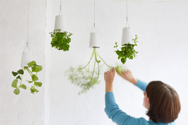 Product design developers create new ways to make products more eco-friendly.