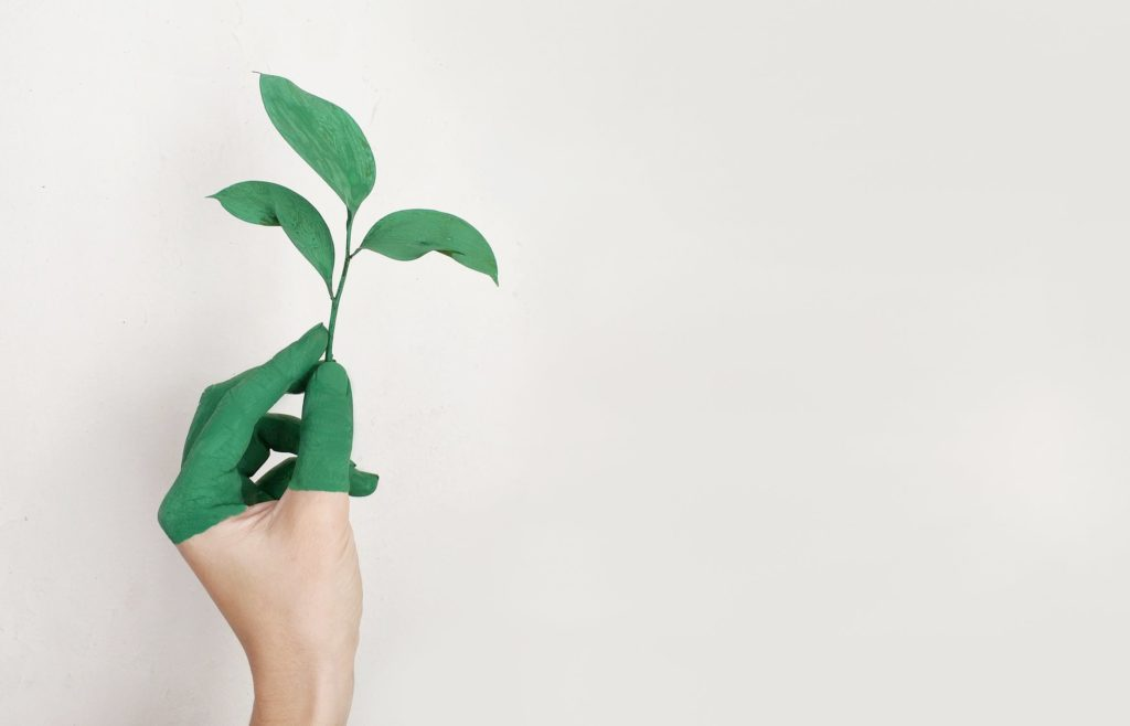 Product design developers can create products to make the environmental impact limited, or even, a net positive.