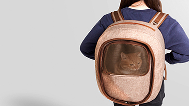 The Newest Innovative Designs For Backpacks