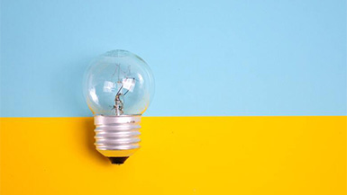 Beyond the Idea: Key Elements to Successful Startups
