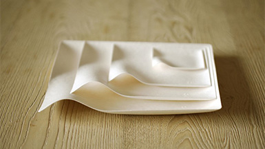 Solutions to Problems Worth Solving: Compostable Tableware