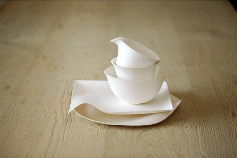 compostable tableware invention design: WASARA